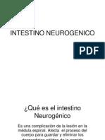 INTESTINO NEUROGENICO