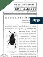 El gorgojo de las judias - 1942.pdf