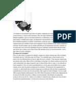 INSTRUMENTOS.docx Practica 2