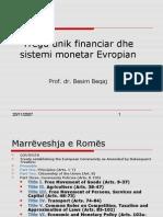 iee6-treguunikfinanciardhesistemimonetarevropian-100101171020-phpapp02