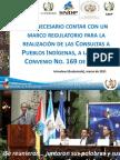 Anexo No. 6 Si es necesario un marco regulatorio para las consultas a pueblos indígenas