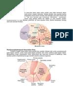 Cortex Cerebri - Area Asosiasi - Arzia