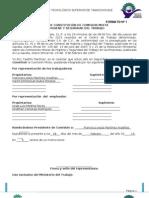 formato-constitucionmixta.doc