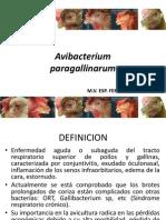Avibacterium paragallinarum