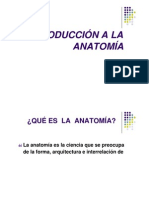 INTRODUCCIÓN A LA ANATOMÍA.docx