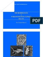 03 Morfología funcional