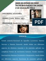 Aula 01 bases gerais - Cópia.pdf
