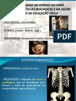 Aula 02 Sistema Esquelético I (1).pdf
