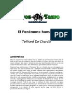 El Fenomeno Humano, Teilhard D Chardin