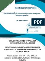 Presentacion Avances Convenio Cuenca Cali