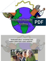 Multiculturalism Online
