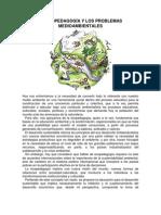 La Ecopedagogía y los problemas medioambientales