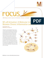 Inhibitors Research Focus 2013v1