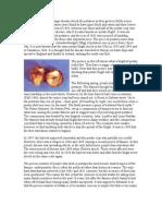 MRSM K.KLAWANG - Potato People Info 2