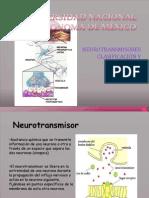 Neurotransmisores y Clasificacion