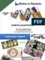 Aula10 Genticadepopulaes Genticaquantitativa 120531211640 Phpapp02