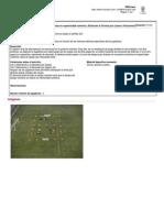 Partidos 2x1 por líneas en superioridad numérica. (Potenciar la Técnica por Líneas o Posiciones