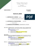 Plan de Labor 10-10-12 SES ESP Presup 2013 y Otros