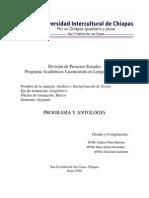 Análisis-e-interpretación-de-textosl-PROGRAMA