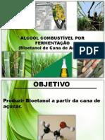 SLIDES DO SEMINÁRIO DE ORGÂNICA
