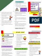 Orientaciones Padres Tríptico.pdf