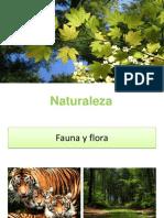 Natural Ez A