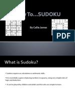 presentationsudokuassignment-110105055602-phpapp01