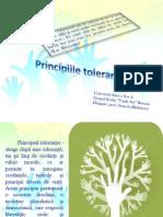 1_toleranta.pps