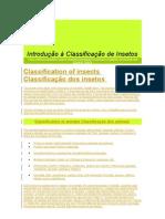 Introdução à Classificação de Insetos