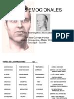63 Pares Biomagneticos Emocionales Graficados(1)