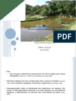 Ictiofauna de um tributário da represa de Barra Bonita