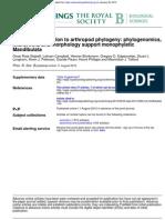 Arthropod Phlogenomics by Rota-Stabelli