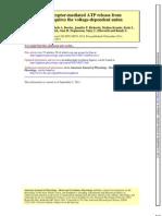 Am J Physiol Heart Circ Physiol-2012-Sridharan-H553-9