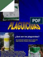 Plagui.nicaragua