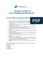 The Easy Guide to Training Your Cat