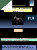 CLASE 1 Ventilación 2013.pptx