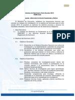 LINEAMIENTOS DE SEMINARIO 2013.pdf