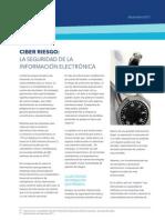 Cyber Risk Newsletter 2011