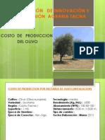 Costo de Produccion Del Olivo