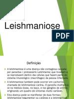 Leishmaniose.pptx