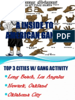 A Inside to American Gangs