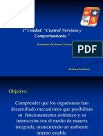Ppt 3_em Sistema Nervioso Central