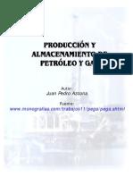 Produccion y Almacenamiento de Petroleo y Gas