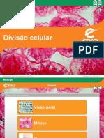 Em Bio 03002
