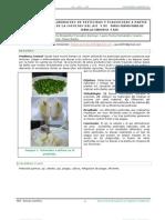 articulo cientifico ultimo.docx