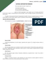 Apostila I - Mód. II - Sistema Reprodutor Feminino - colorido