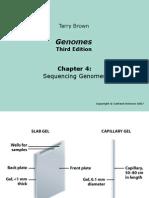 Genomes3e_ppt_ch04