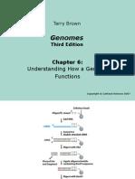 Genomes3e_ppt_ch06