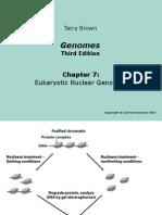Genomes3e_ppt_ch07