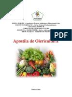 apostila de olericultura.nad.pdf